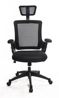 Rib Mesh Executive Office Chair (ZP803H)